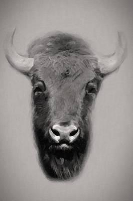 Portrait Of A Buffalo Original by Toppart Sweden