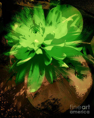 Nature Abstract Mixed Media - Portrait Of A Flower by Gerlinde Keating - Keating Associates Inc