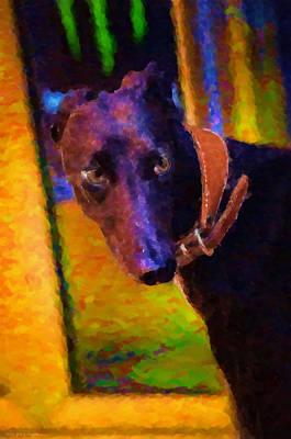 Black Dog Digital Art - Portrait Of A Portuguese Dog 2 by Mary Machare