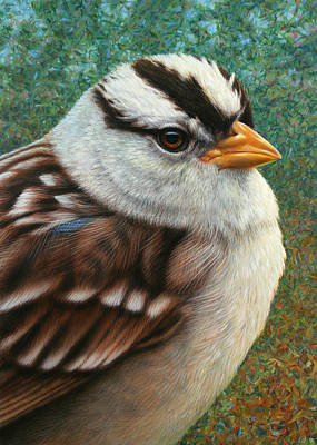 Stripe Drawing - Portrait Of A Sparrow by James W Johnson