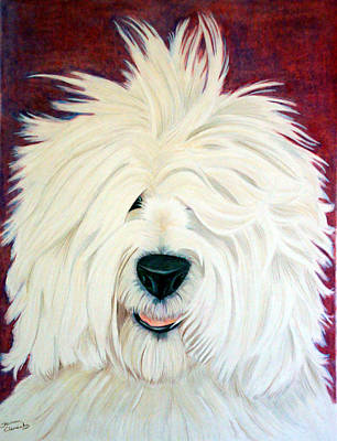 Portrait Of An English Sheepdog Print by Shannon Clements