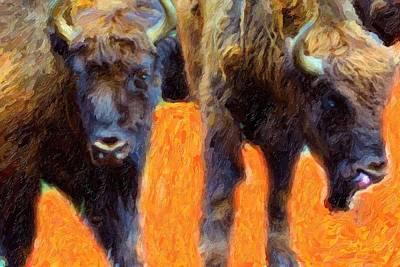 Portrait Of Bison  Original by Toppart Sweden