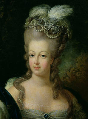 Portrait Of Marie Antoinette De Habsbourg Lorraine Print by French School