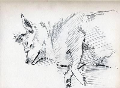 Whistler Drawing - Posey Sleeping by Whistler Kenworthy
