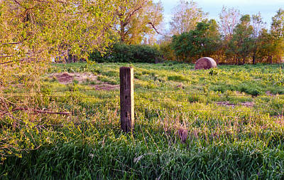 Post And Haybale Print by Tracy Salava