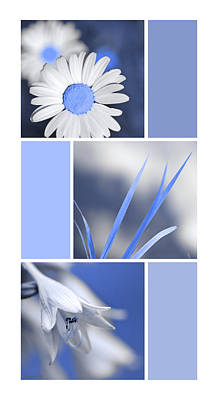 Blooming Digital Art - Blue Flower Collage by Christina Rollo