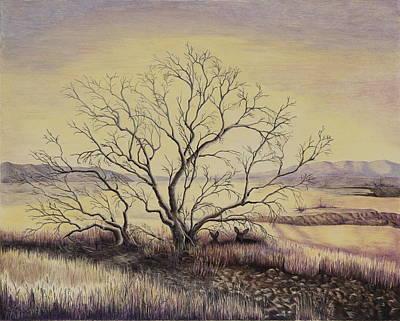 Prairie During The Dry Season Print by Gina Gahagan