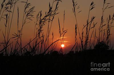 Sunset Photograph - Prairie Grass Sunset by Deborah Smolinske