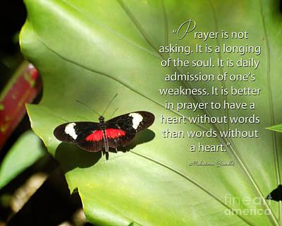 Mahatma Gandhi Photograph - Prayer by Diane E Berry