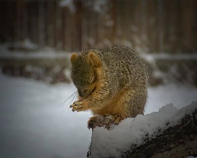 Winter Scenes Photograph - Prayer Time by Ernie Echols