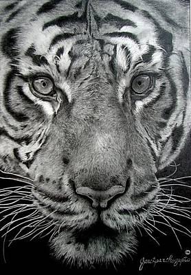 Hong Kong Drawing - Predator's Stare Drawing by Janet Pancho Gupta