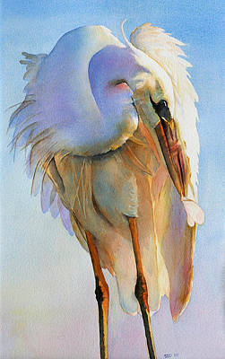Sea Birds Painting - Preening Egret by Sarah Buell  Dowling