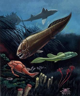 Paleozoology Photograph - Prehistoric Fish by Deagostini/uig