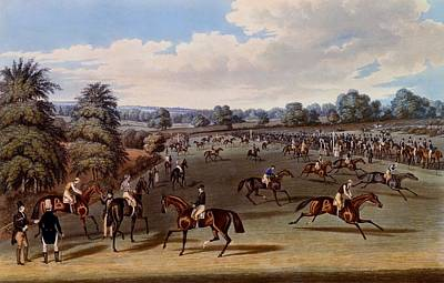 Race Horse Drawing - Preparing To Start, Print Made by James Pollard