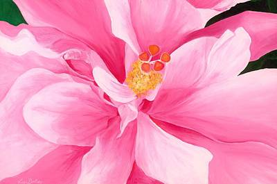 Pretty Pink Hibiscus Painting Print by Lisa Bentley