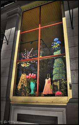 Obryant Photograph - Pretty Window by Tyra  OBryant