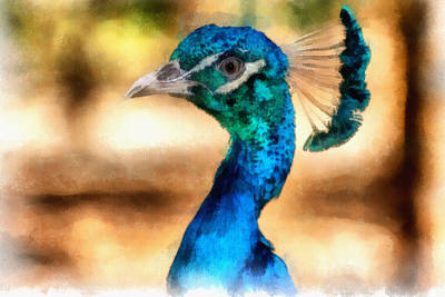 Cute Bird Digital Art - Pride by Ayse Deniz