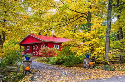 Autumn Photograph - Primary Ontario by Steve Harrington
