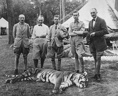 In A Row Photograph - Prince Of Wales Kills Tiger by Underwood Archives