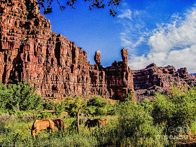 Whitehouse Digital Art - Private Home Canyon Dechelly by Bob and Nadine Johnston