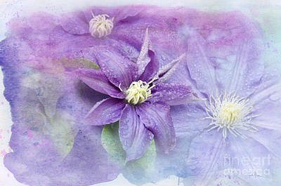 Stamen Digital Art - Profusion Of Purple by Betty LaRue