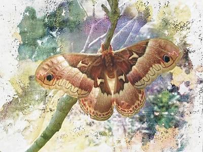 Promethea Silkmoth Print by Joe Duket