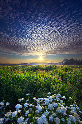 Love Laces Photograph - Promise Fulfilled by Phil Koch
