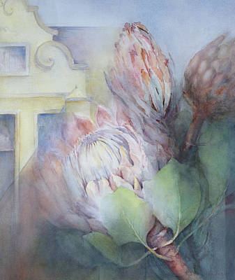 South Africa Drawing - Protea At Stellenbosch by Karen Armitage