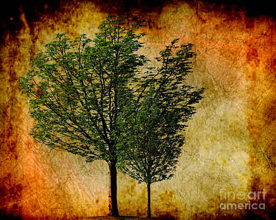 Abstract Digital Art Photograph - Protected Together by Cheryl Young