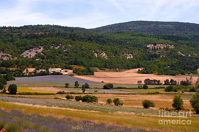 Provence Landscape Print by Bob Phillips