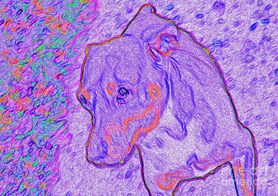 Puppy Mixed Media - Psychadelic Psycho by Minding My  Visions by Adri and Ray