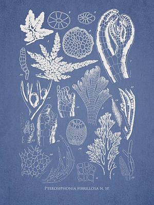 Alga Digital Art - Pterosiphonia Fibrillosa by Aged Pixel