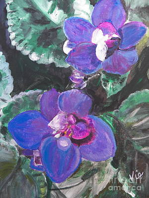 ptg   African Violets Print by Judy Via-Wolff