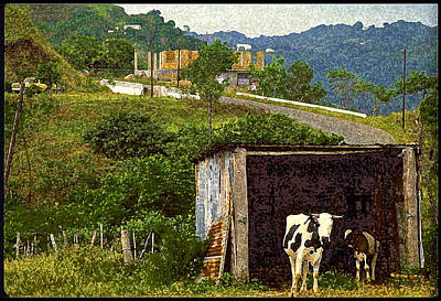 Puerto Rico Digital Art - Puerto Rico Countryside by Ed Hoppe