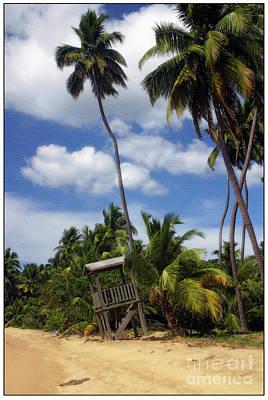 Puerto Rico Palms II Print by Madeline Ellis