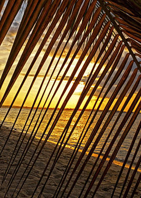 Puerto Rico Sunset 2 Print by Stephen Anderson
