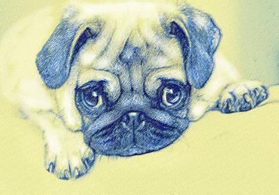 Puppies Digital Art - Pug Puppy Pastel Sketch by Jane Schnetlage