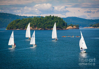 Canoe Photograph - Puget Sound Sailboats by Inge Johnsson