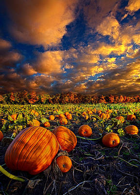 Fall Photograph - Pumpkin Crossing by Phil Koch