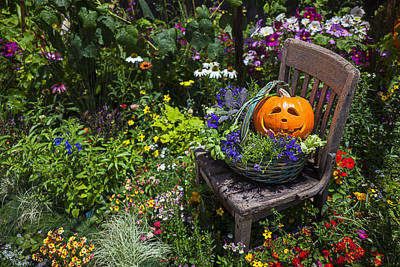 Autumn Photograph - Pumpkin In Basket On Chair by Garry Gay