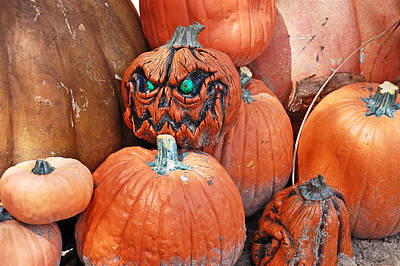 Aimeemaher Photograph - Pumpkin Patch by Aimee L Maher Photography and Art Visit ALMGallerydotcom
