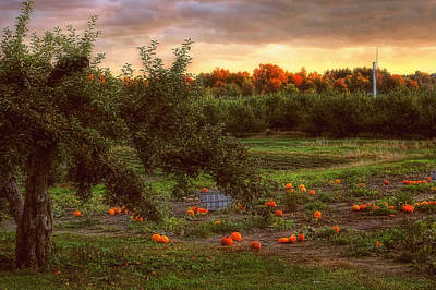 Pumpkin Patch Print by Joann Vitali