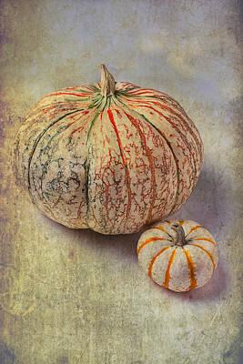 Pumpkin Textures Print by Garry Gay