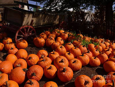 Indiana Photograph - Pumpkin Wagon  by Amy Lucid