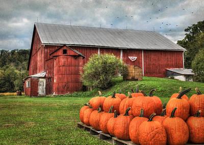 Pumpkins For Sale Print by Lori Deiter