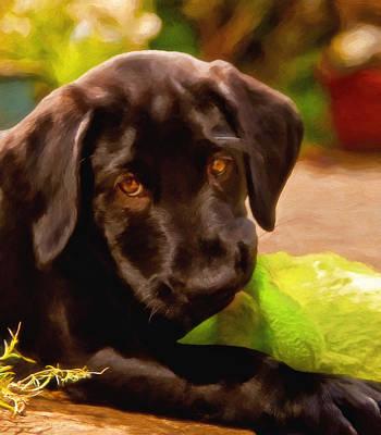 Black Lab Puppy Painting - Puppy Love by Michael Pickett