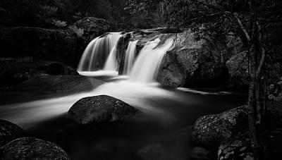 Purity Print by Mark Lucey