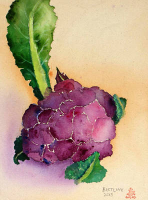 Cauliflower Painting - Purple Cauliflower by Claire Bistline