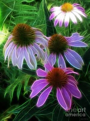 Abstracted Coneflowers Digital Art - Purple Coneflower Echinacea by Kathie McCurdy