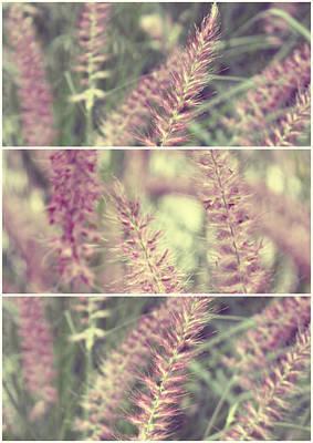 Purple Flowers Digital Art - Purple Fields by Cathie Tyler